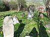 Jewish cemetery in Baligrod, Poland