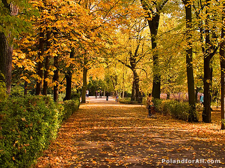 Warsaw - Lazienki Royal Park - autumn view